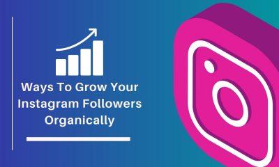 Ways To Grow Your Instagram Followers Organically
