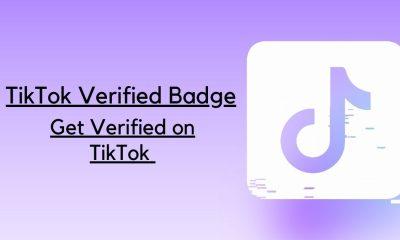 TikTok Verified Badge